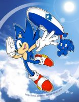 Commission-Sonic by Ade-AndaRio