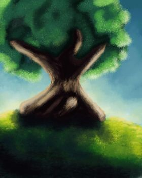 Tree on a hill by busch-art
