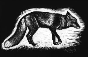 Cross Fox Scratchboard sketch by silvercrossfox