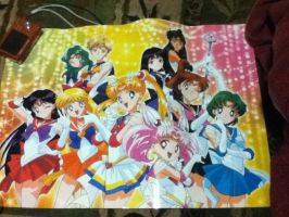 Sailor Moon Poster 2. by TMNTISLOVE