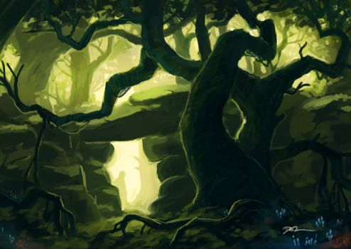 Enchanted Forest by tohdraws