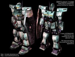 GM Custom: Front + Back by Torador