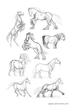 Horse quick sketches part2 by Spighy