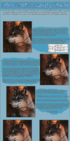 Smudging Tutorial by LullabyeWolfie