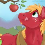 Fan Favorite Series #21 - Big Macintosh by sophiecabra