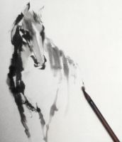 My horse by Jungshan