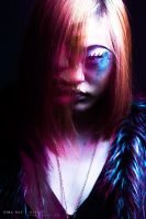 Where the Catwalk Claws by DinaDayMakeup