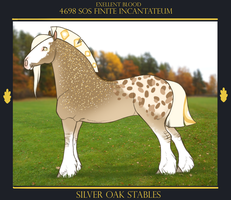 4698 SOS Finite Incantateum ******* by SilveringOak