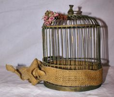 Objects_ cage - 02 by Aimelle-Stock