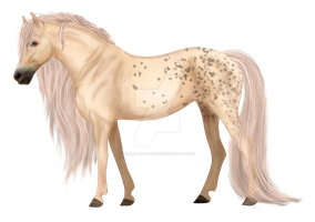 Spotted Palomino by camillarahbech