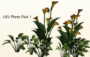 Plants Pack 1 by Lill-stock