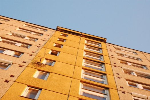 Yellow windows by Wilber