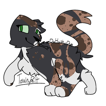 Tawnypelt|Warriors|DaHuskyPup-Draws by DaHuskyPup-Draws