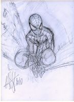 spidey sketch by scarecrowhassan