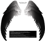 Arch Angel Wings - Smooth Transition by Thy-Darkest-Hour