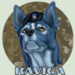 Icon Portraits - only 20usd by Ravica