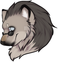 Head commission by SolarXolverite