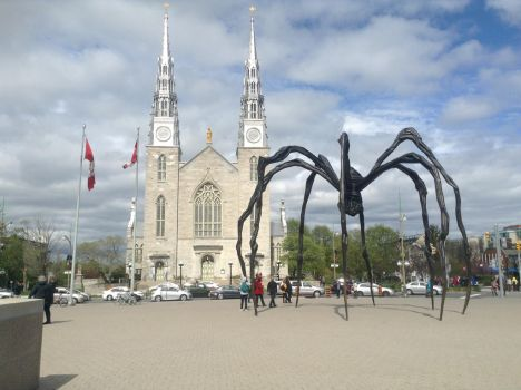 The big spider by Lilygirl0906