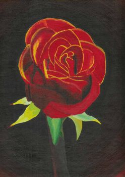 Rose in Acryllic by skittles52