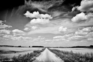 Till the road ends by orlibraorli