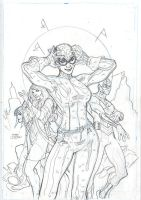 CATWOMAN 30 Cover Pencil by TerryDodson