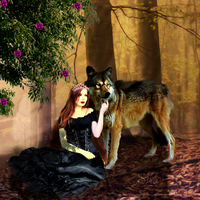 The Princess of the forest and the wolf by SilviaMS