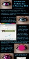 How to Color Realistic Eyes by CatieChaos-Stock