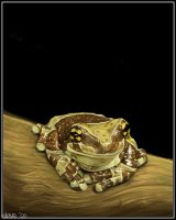Frog on a Log by BikerScout