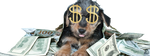 Money Dog by wtfemm