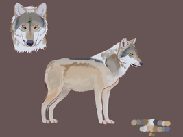 Seer -Full Reference- by nihtgield