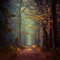 Become the Unknown by Oer-Wout