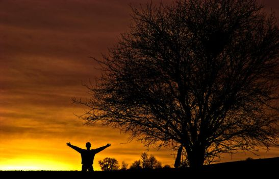 The lonely Sunseeker by ervin21