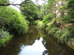 River Vartry by D-A-Skelly