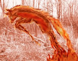 Fire Fox by flamable77