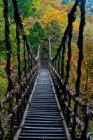the bridge of autumn by little-alenka