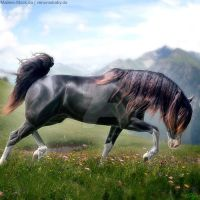 Horse Avatar | Sonja by skystream11