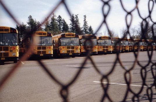 fence and buses 021708 by fairyguts