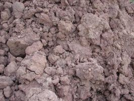 Cracked Earth Dirt Texture 05 by FantasyStock