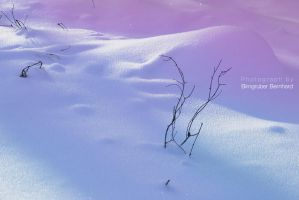 coloured snow by broens