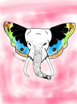 Elephant Fly by amandaponso