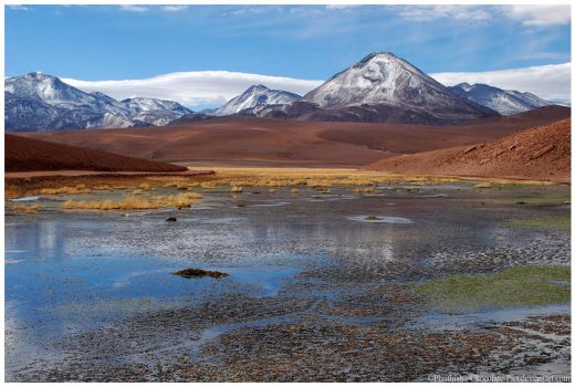 Rio Grande by Chocolate-Pict