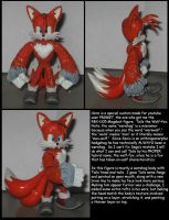 Custom Commission: Tails the Wolf-fox by Wakeangel2001