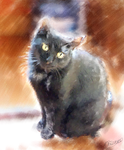 My friends' Cat_Lavric by Oliinka