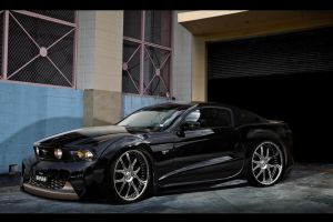 Tha BOSS - Ford Mustang 2010 by blackdoggdesign