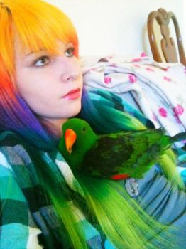 Eclectus and Rainbow love by lane-nee-chan