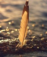 Your heart must be light as a feather to win by Peterix
