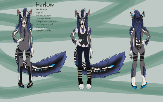 Harlow Human Form Reference Sheet by scamper696
