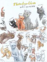 Warriors ThunderClan by NiaNook33