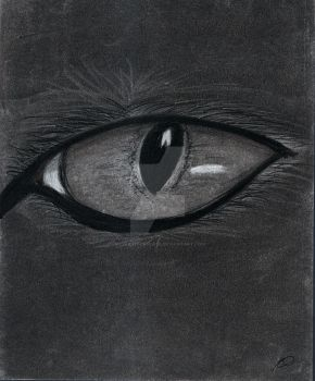 Cat's Eye by Silver-Hourglass