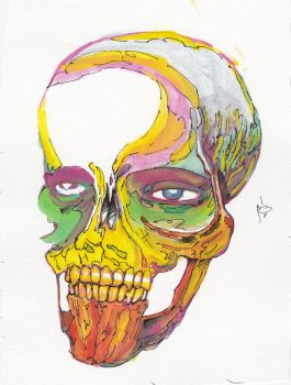 Colorful Skull by naser-q8